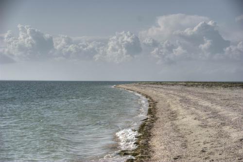 Бирючий остров