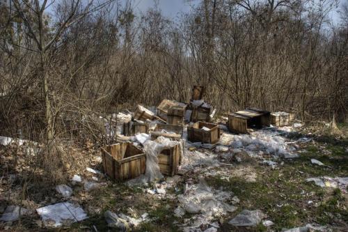 Мусор - проблема всей Украины