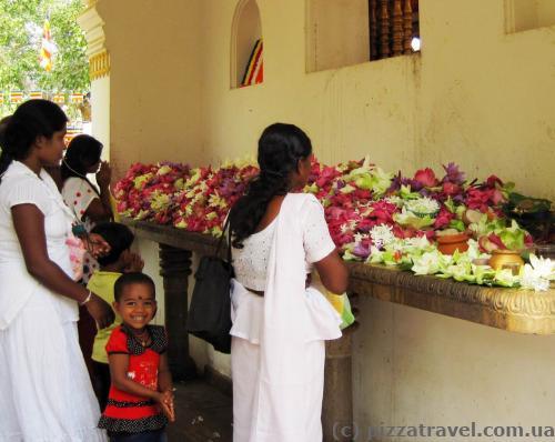 Местные жители приносят цветы лотоса и возлагают их на алтарь.