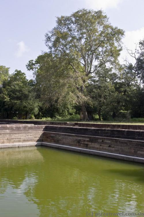 Бассейны-близнецы (Kuttam Pokuna)