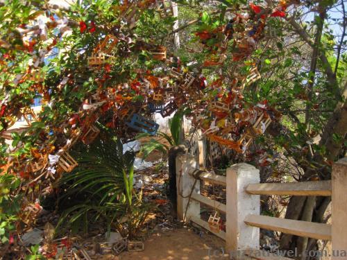 Чего только не вешают на деревья в храмах