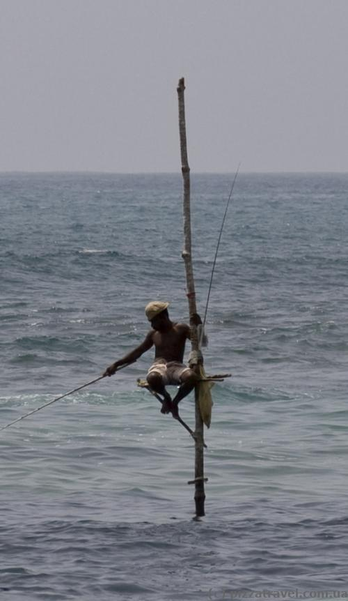 Fisherman on a pole in Weligama Bay
