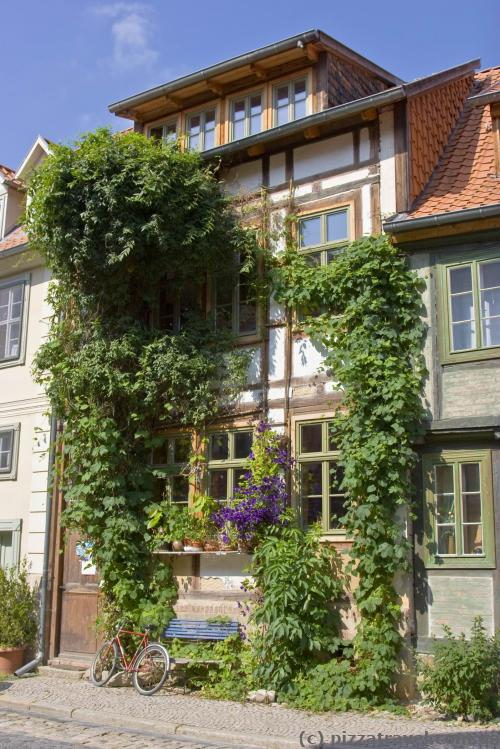 Зелений будинок у Кведлінбурзі