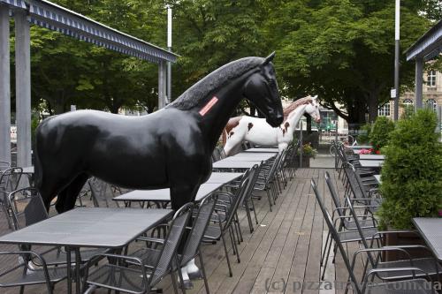 Сидишь себе в ресторане и тут подходит конь.