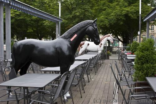 Horses in the restaurant