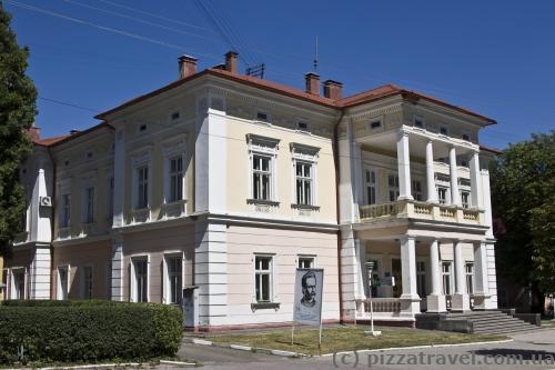 Villa in Drohobych