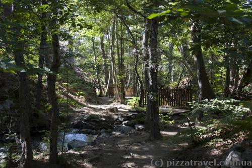 Caledonia Trail