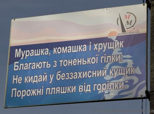 Социальные таблички в парке Островского в Коростене