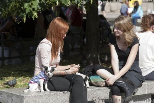 В Милане все носят сапоги, даже в самую жаркую погоду.