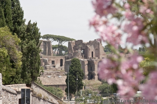 Municipal rose garden and Roman Forum