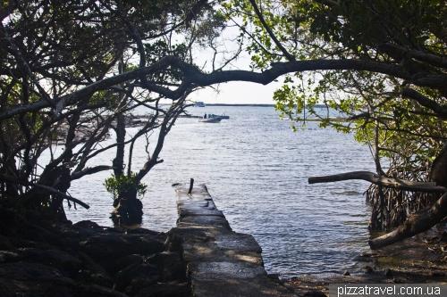 Остров Фернандина