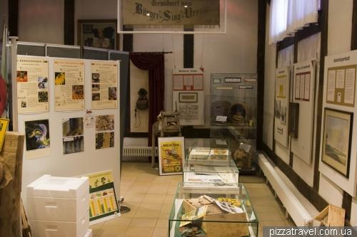 Музей для пчеловодов в Штадтхагене