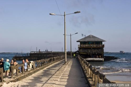 Пуэрто Вильямиль (Puerto Villamil, остров Изабелла)