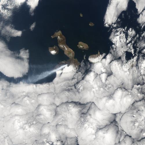 Извержение вулкана Сьерра-Негра в 2005 году