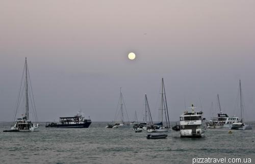 Puerto Ayora (Santa Cruz)
