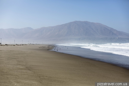 Перу. Тихий океан