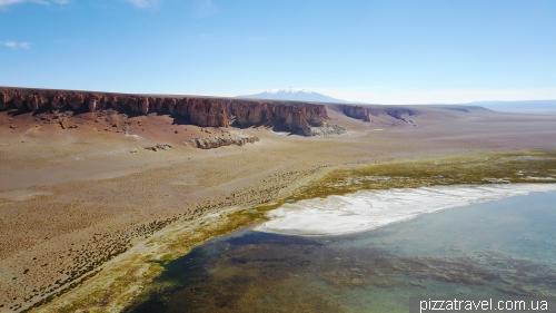 Соляное озеро Салар-де-Тара
