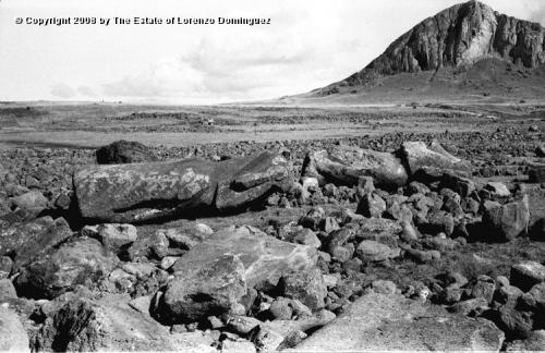 Остров Пасхи. Цунами 1960