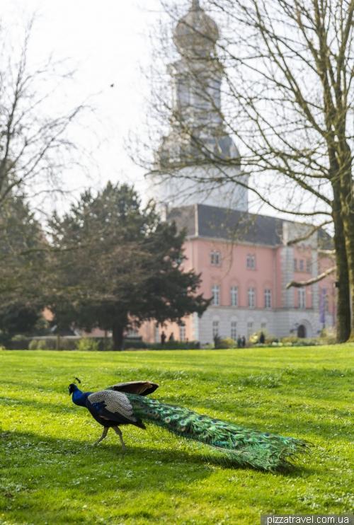Замок Йевер (Schlossmuseum Jever)