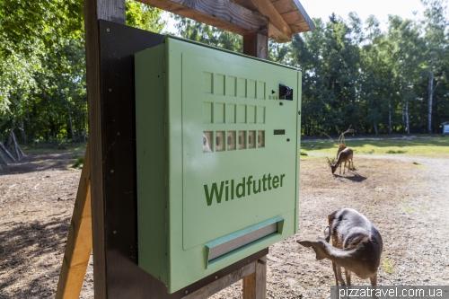Парк дикой природы в Мюдене (Wildpark Mueden)