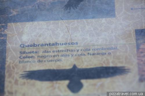 Смотровая площадка Грифов (Mirador de los Buitres)