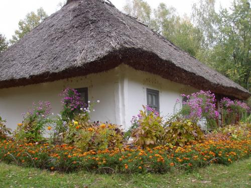 House of a middle peasant