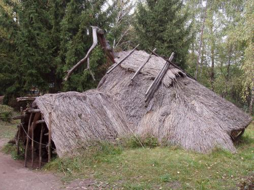 Dobranychivska archeological site (15-10 th. years BC)