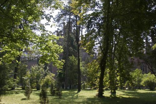Університетський парк