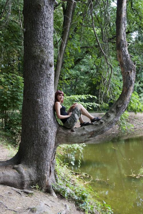 Русалка на ветвях сидит