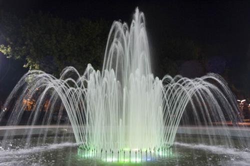 Fountain in the Lenin Park
