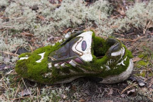 Следующее поколение обуви - эко