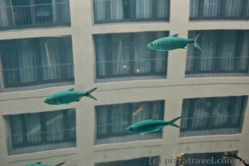 Аквадом в центре морской жизни в Берлине