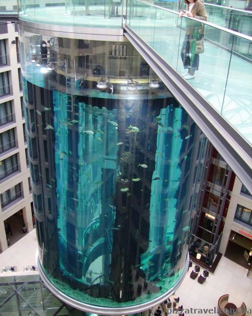 Aquadom in Sea Life in Berlin
