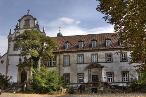 Лівий фасад замку Рінгельхайм закинутий