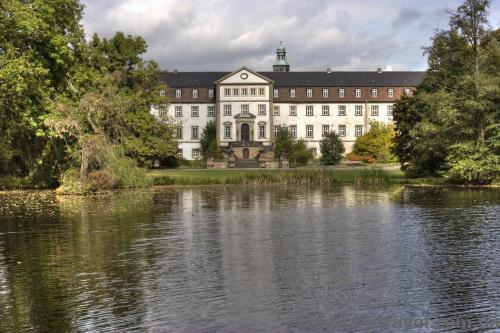Замок Рінгельхайм