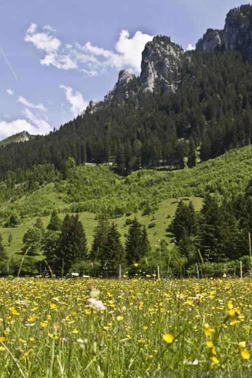 Идем к канатной дороге на гору Тегельберг