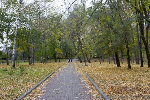 Парк Березовый гай