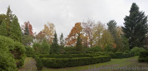 Syrets Arboretum