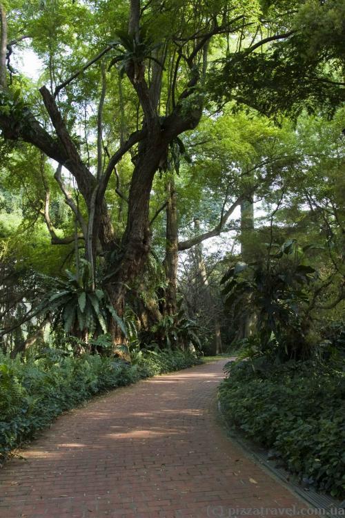 Справжній ботанічний сад