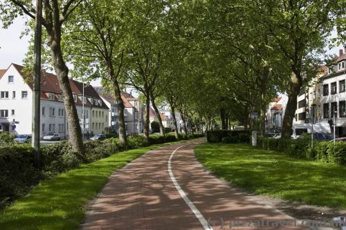 Навколо центру міста проходить алея з велосипедною доріжкою.