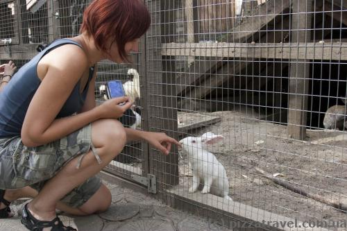 Зоопарк в Украинском селе